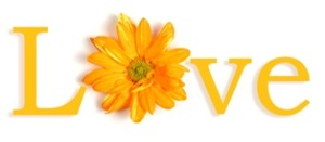 The word love in English with the O replaced by a yellow flower.
