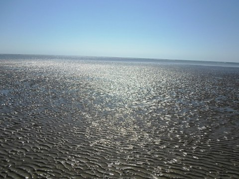 Photo taken on Seabrook Island, SC where the channels pour into the ocean.