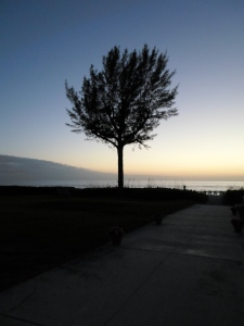 Nature Inspiration - Sunset/Sunrise