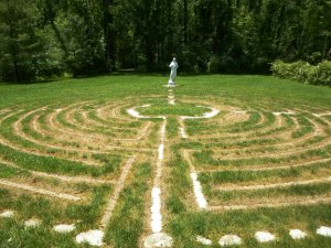 Consciousness Vortex and labyrinth